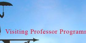 Visiting Professor Programme
